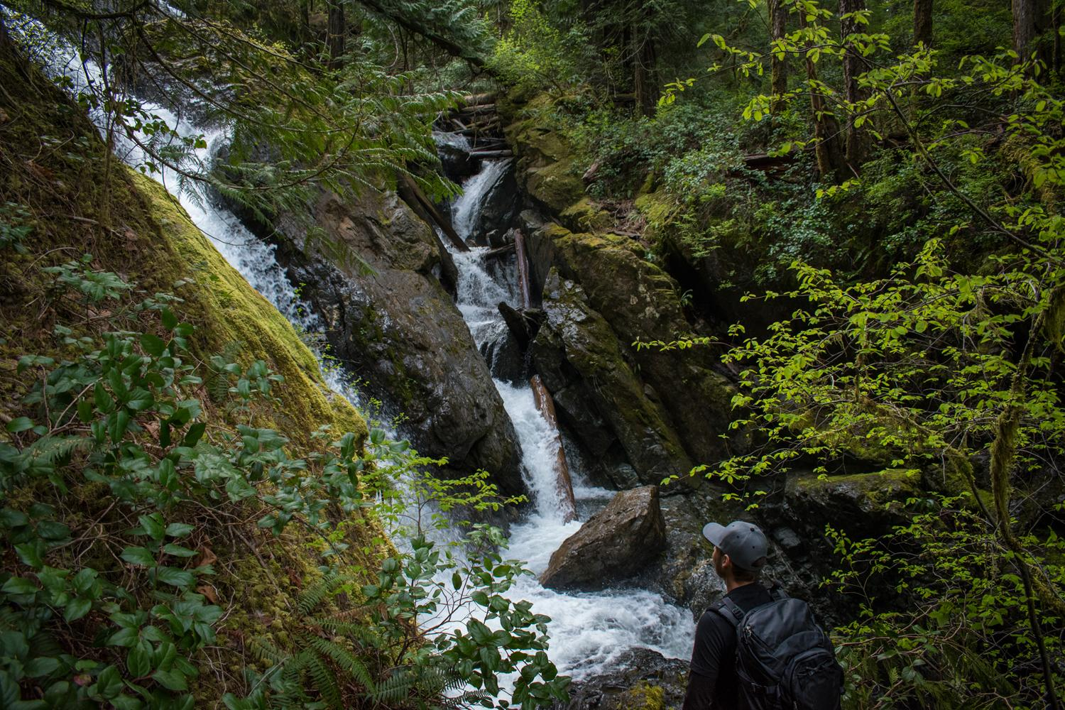 Port Alberni Hiking