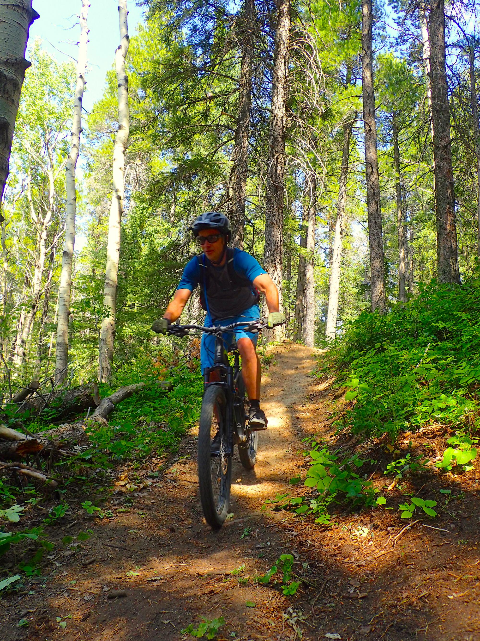 Biking in Cypress Hills